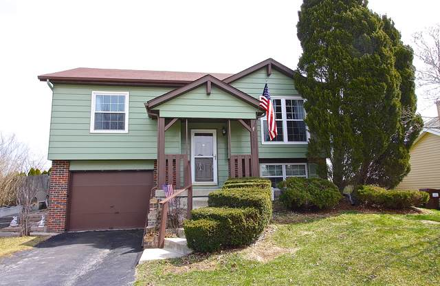 20809 S Hickory Creek Place, Frankfort, IL 60423 (MLS #10601756) :: Property Consultants Realty