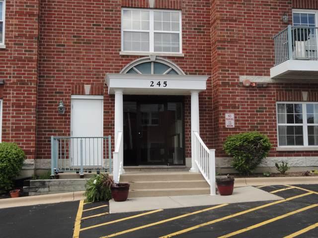 245 W Johnson Street #206, Palatine, IL 60067 (MLS #10601986) :: Helen Oliveri Real Estate