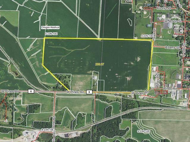990 Pines Road, Oregon, IL 61061 (MLS #10604492) :: Angela Walker Homes Real Estate Group