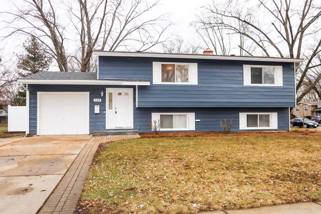 729 Darlington Lane, Crystal Lake, IL 60014 (MLS #10604603) :: BN Homes Group