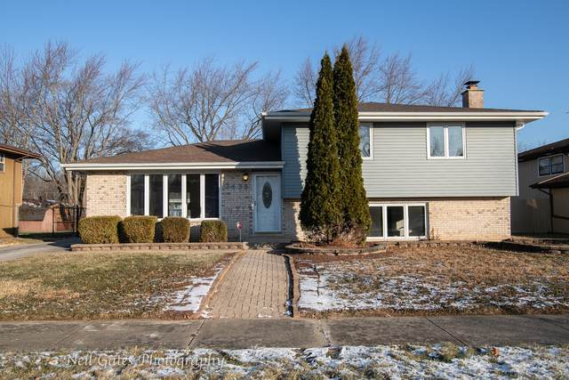 3436 218th Place, Matteson, IL 60443 (MLS #10605056) :: BN Homes Group