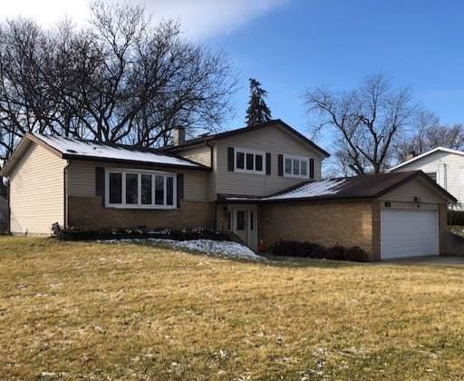 7410 Seminole Drive, Darien, IL 60561 (MLS #10606486) :: Angela Walker Homes Real Estate Group