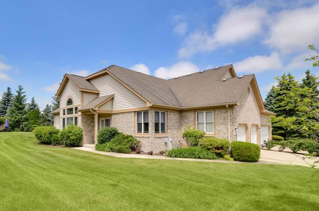 14406 S Provencal Drive, Homer Glen, IL 60491 (MLS #10607141) :: The Wexler Group at Keller Williams Preferred Realty
