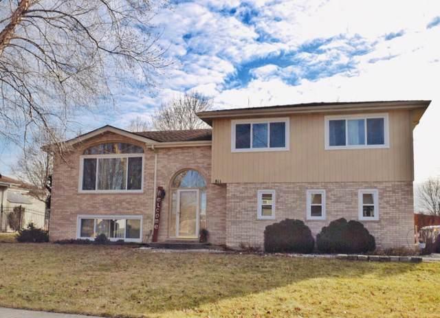 811 Winnebago Court, Romeoville, IL 60446 (MLS #10607142) :: Angela Walker Homes Real Estate Group