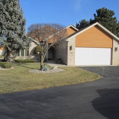 6502 Scotch Pine Drive, Tinley Park, IL 60477 (MLS #10607482) :: Angela Walker Homes Real Estate Group