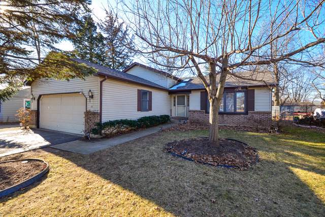1111 Birch Street, Lake In The Hills, IL 60156 (MLS #10607591) :: The Wexler Group at Keller Williams Preferred Realty