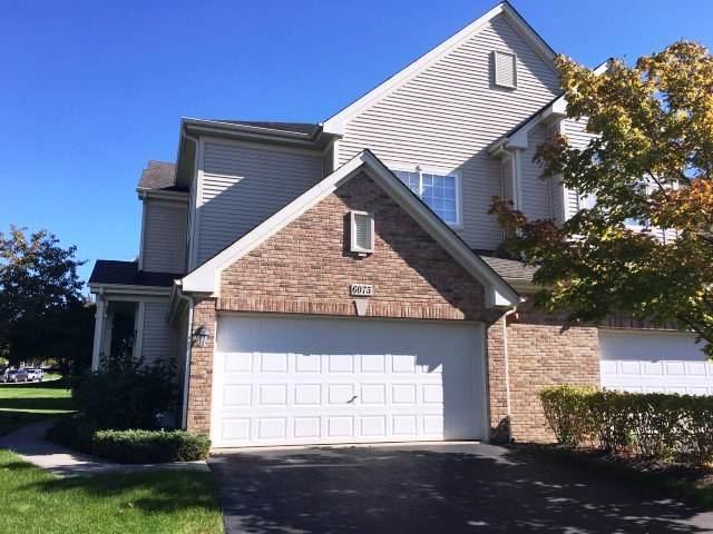 6075 Delaney Drive, Hoffman Estates, IL 60192 (MLS #10607743) :: Angela Walker Homes Real Estate Group