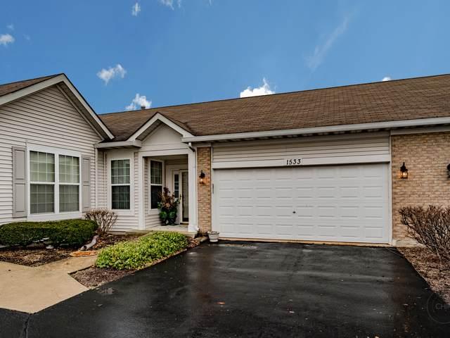 1533 W Ludington Circle, Romeoville, IL 60446 (MLS #10607866) :: Angela Walker Homes Real Estate Group