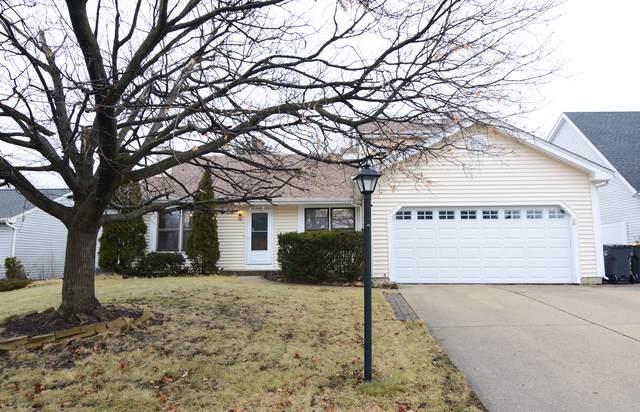 301 N Oltendorf Road, Streamwood, IL 60107 (MLS #10608084) :: Ani Real Estate