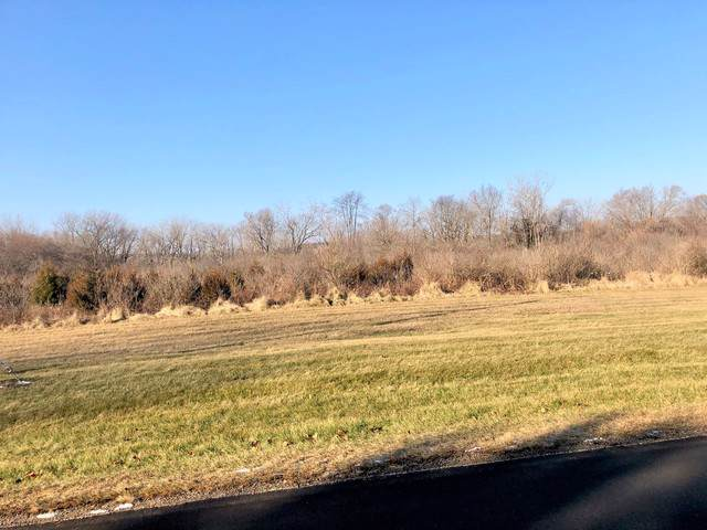 415 N Bushnell Street, Sheridan, IL 60551 (MLS #10608127) :: Angela Walker Homes Real Estate Group
