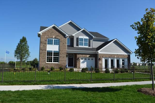 25214 W Jackson Lane, Plainfield, IL 60586 (MLS #10608324) :: Angela Walker Homes Real Estate Group