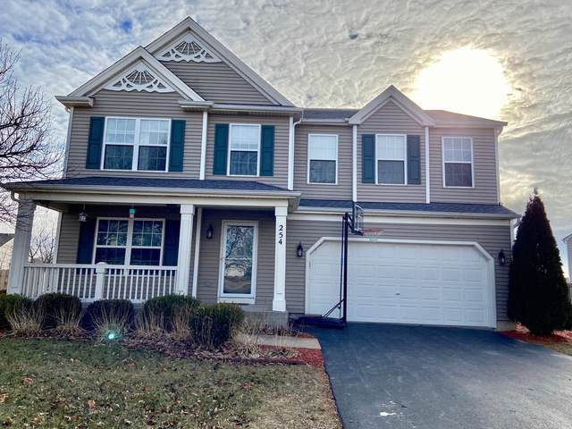 254 Switchgrass Drive, Minooka, IL 60447 (MLS #10608371) :: Angela Walker Homes Real Estate Group
