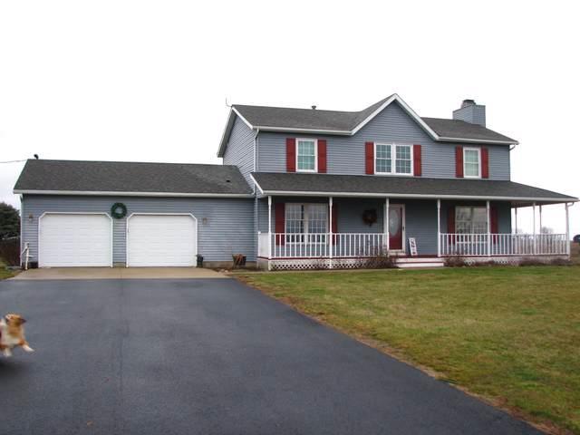 1202 E County Road 800, Tuscola, IL 61953 (MLS #10608387) :: Littlefield Group