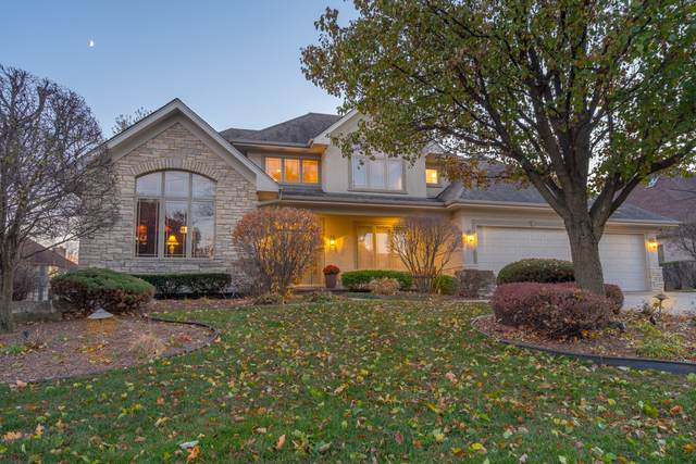 227 Sawgrass Drive, Palos Heights, IL 60463 (MLS #10608582) :: The Wexler Group at Keller Williams Preferred Realty