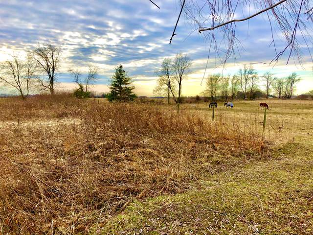 Lot 6 Ramm Woods Drive, Maple Park, IL 60151 (MLS #10608840) :: Angela Walker Homes Real Estate Group