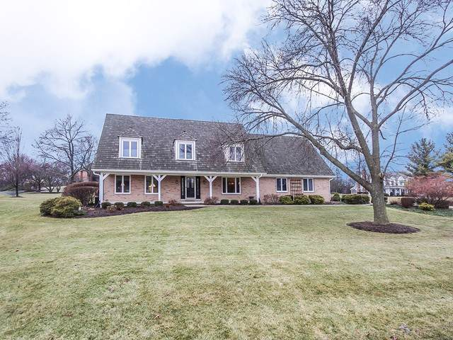 20800 N Meadow Court, Deer Park, IL 60010 (MLS #10608844) :: Ani Real Estate