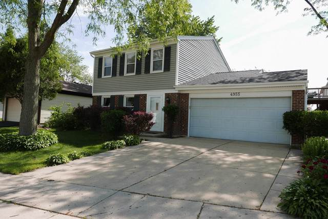 4955 Rochester Drive, Hoffman Estates, IL 60010 (MLS #10609354) :: Angela Walker Homes Real Estate Group