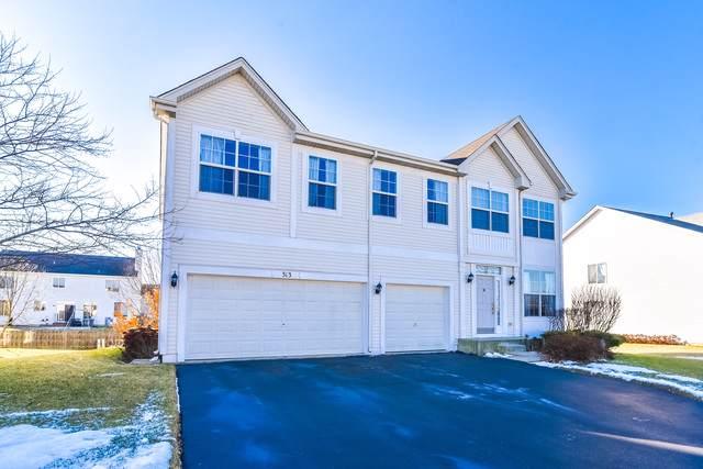 313 W Biros Lane, Round Lake, IL 60073 (MLS #10609466) :: Century 21 Affiliated