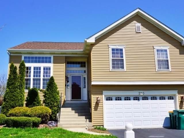 250 W Prairie Lane, Round Lake, IL 60073 (MLS #10609729) :: Angela Walker Homes Real Estate Group
