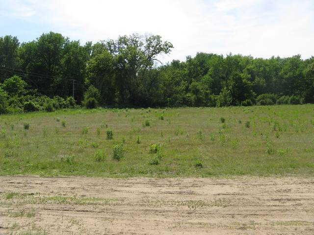 lot 1 S Irish Lane, Custer Park, IL 60481 (MLS #10609943) :: Angela Walker Homes Real Estate Group