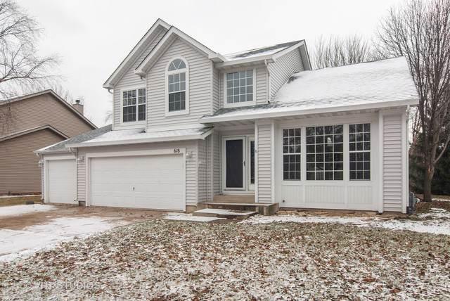 618 Salem Circle, Oswego, IL 60543 (MLS #10610058) :: The Dena Furlow Team - Keller Williams Realty