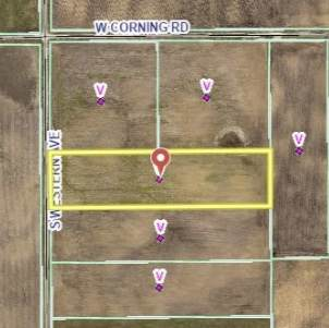 UNK S Western Avenue, Beecher, IL 60401 (MLS #10610088) :: Angela Walker Homes Real Estate Group