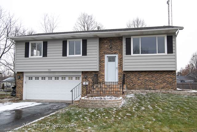 790 Laurel Drive, Aurora, IL 60506 (MLS #10610204) :: Property Consultants Realty