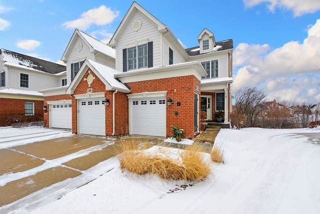 49 Harborside Way, Hawthorn Woods, IL 60047 (MLS #10610402) :: Property Consultants Realty