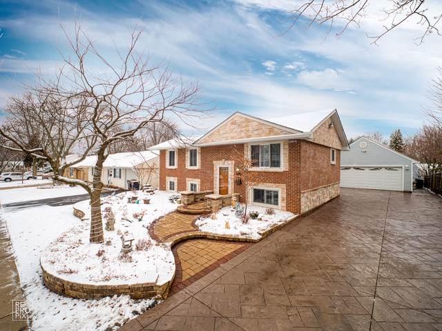 722 Surrey Drive, Streamwood, IL 60107 (MLS #10610715) :: Ani Real Estate
