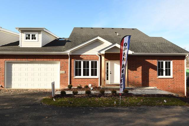 500 Prairie Crossing Drive, New Lenox, IL 60451 (MLS #10610727) :: Angela Walker Homes Real Estate Group