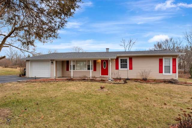 20033 Hillgate Road, Mokena, IL 60448 (MLS #10610806) :: The Wexler Group at Keller Williams Preferred Realty