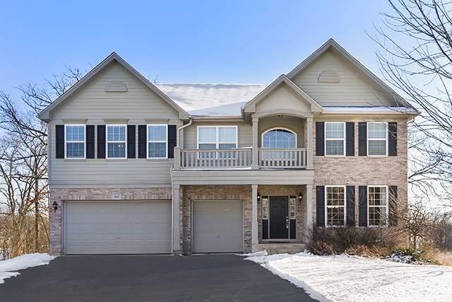 245 Regency Drive, Bartlett, IL 60103 (MLS #10610958) :: Suburban Life Realty