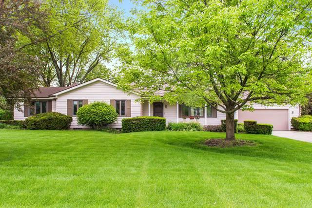 119 Windsor Drive, Dekalb, IL 60115 (MLS #10610998) :: Suburban Life Realty