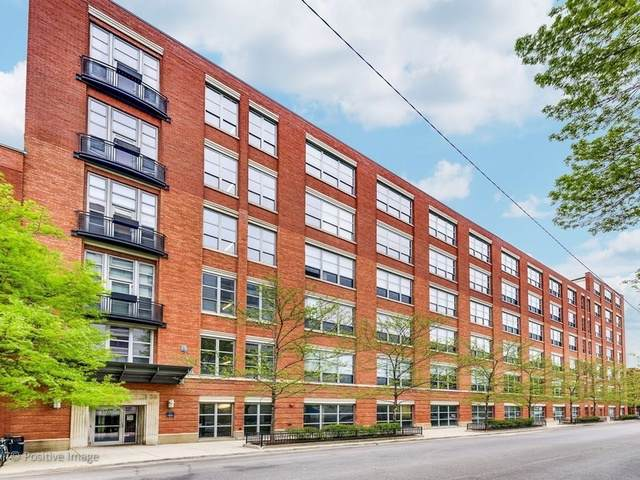 1735 N Paulina Street #505, Chicago, IL 60622 (MLS #10611254) :: Property Consultants Realty