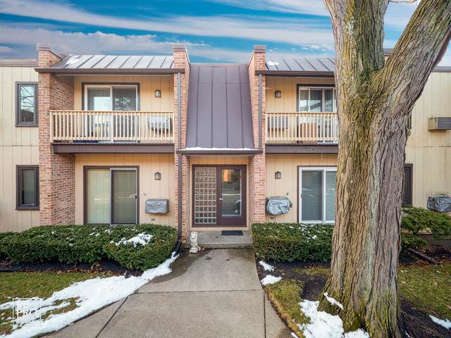 1755 Henley Street 1N, Glenview, IL 60025 (MLS #10611437) :: Property Consultants Realty