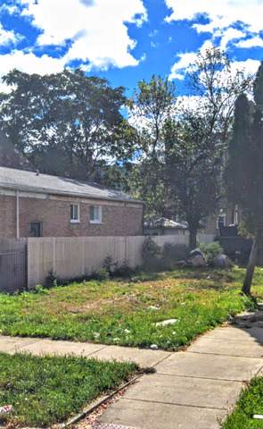 4059 W Crystal Street, Chicago, IL 60651 (MLS #10611589) :: Touchstone Group