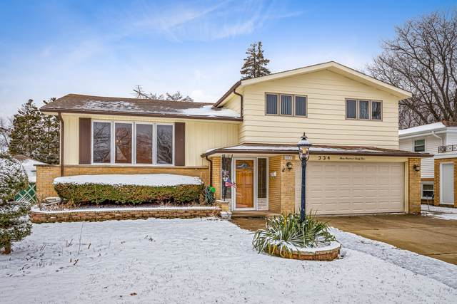 334 Wilkins Drive, Des Plaines, IL 60016 (MLS #10611815) :: Property Consultants Realty