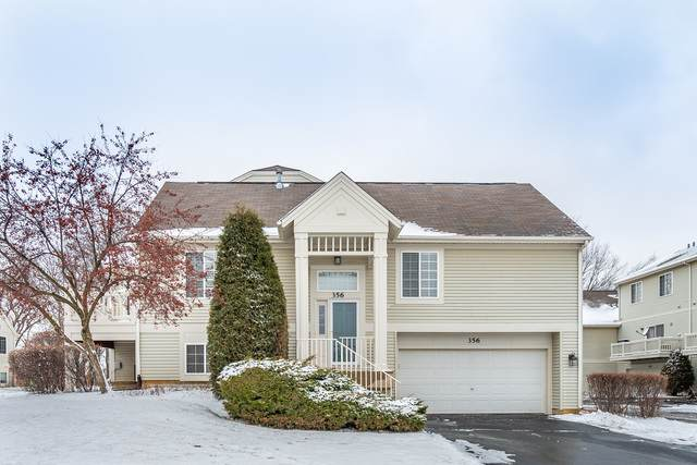 356 New Haven Drive, Cary, IL 60013 (MLS #10611826) :: Property Consultants Realty
