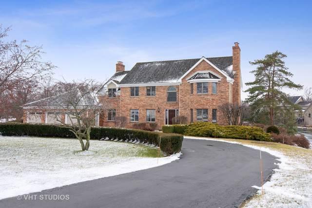 20576 N Meadow Lane, Deer Park, IL 60010 (MLS #10611866) :: Ani Real Estate