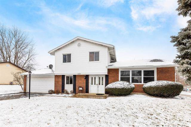 439 Justine Avenue, Bolingbrook, IL 60440 (MLS #10611881) :: The Wexler Group at Keller Williams Preferred Realty