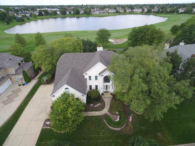 2460 Fawn Lake Circle, Naperville, IL 60564 (MLS #10611995) :: Angela Walker Homes Real Estate Group