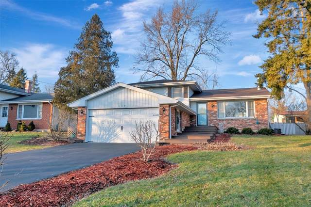 137 W Wood Street, New Lenox, IL 60451 (MLS #10612028) :: Property Consultants Realty
