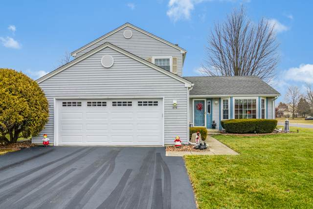 870 Fieldside Lane, Aurora, IL 60504 (MLS #10612058) :: Property Consultants Realty