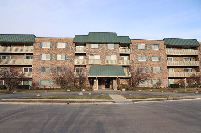 675 Grove Drive #305, Elk Grove Village, IL 60007 (MLS #10612096) :: Berkshire Hathaway HomeServices Snyder Real Estate