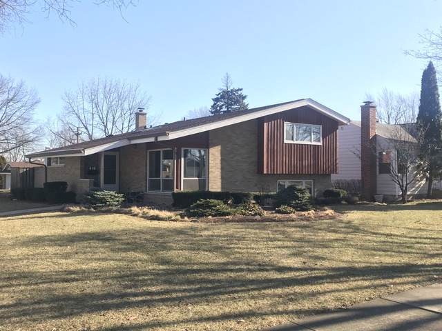 419 N Yale Avenue, Villa Park, IL 60181 (MLS #10612370) :: Angela Walker Homes Real Estate Group