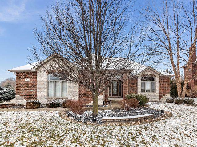 7924 Big Buck Trail, Frankfort, IL 60423 (MLS #10612403) :: The Wexler Group at Keller Williams Preferred Realty