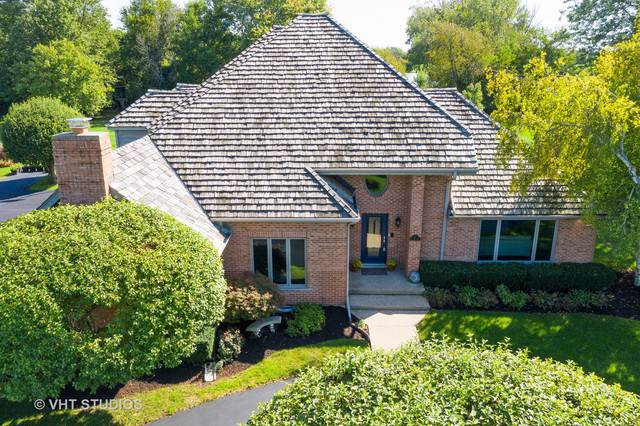 10 St John Drive, Hawthorn Woods, IL 60047 (MLS #10612476) :: Property Consultants Realty