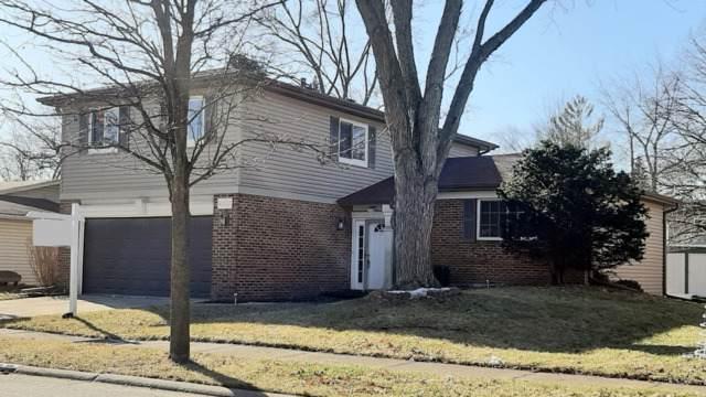 6722 Cherrytree Avenue, Woodridge, IL 60517 (MLS #10612621) :: Property Consultants Realty
