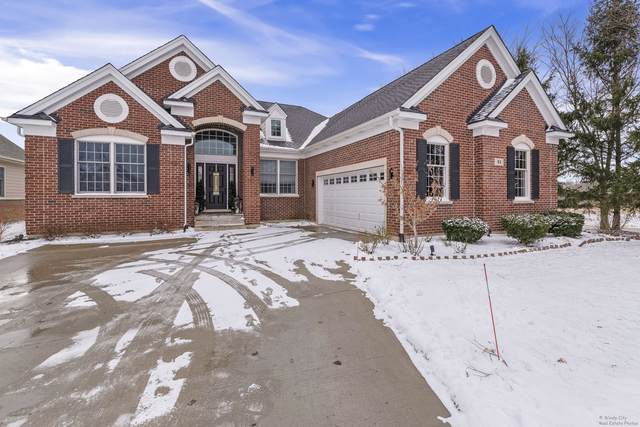 31 Bryce Court, South Barrington, IL 60010 (MLS #10612658) :: Littlefield Group