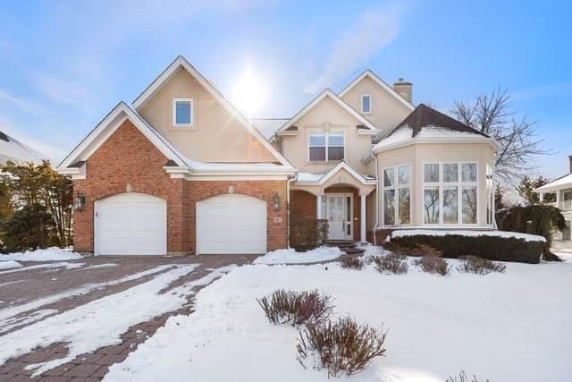 967 W Dorset Avenue, Palatine, IL 60067 (MLS #10612685) :: Lewke Partners